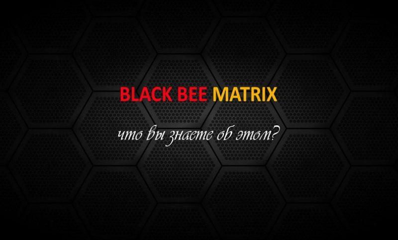 Чёрные пчёлы — Плотники и  Воины