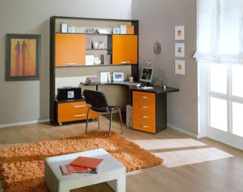 компьютерный стол и стенка дизайн фото