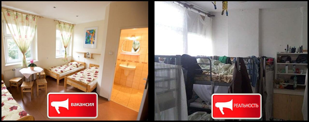 работа в Польше обман фото