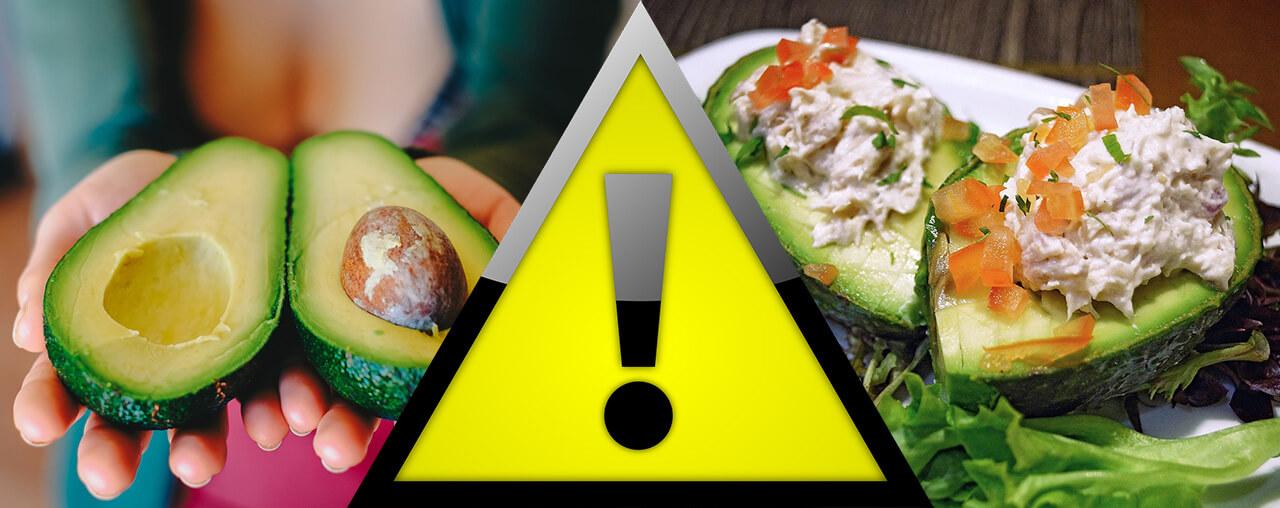 какие продукты мешают похудеть фрукты